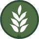 logo-bdp.png